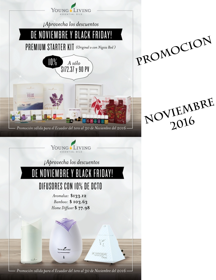 17-promotion