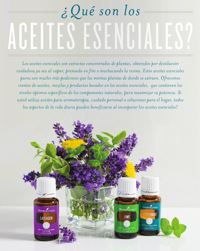 2b-what-are-essential-oils