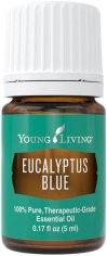 eucalyptus-blue