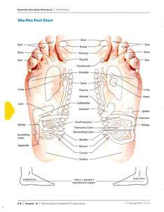 vitaflex-foot-chart